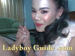 Natural Firm Ladyboy Sucks My Phallus