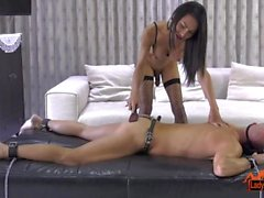 Ladyboy Thippy Domination