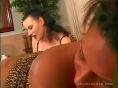 Kinky Threesome Male Shemale Female