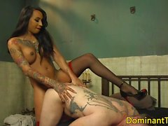 Ebony transgender anal fucks guy doggystyle