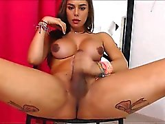 Ladyboy with beautiful big dick on cam