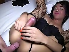 Sensual ladyboy in stockings doing blowjob