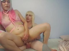 Shy Tgirl Takes Big Chick Dick