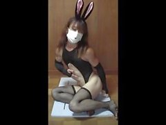 Asian CD - Insane Bunny