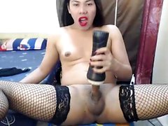 Watch tgirl solo toying