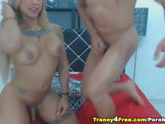 Busty Tranny Doing 69 with her Boyfriend