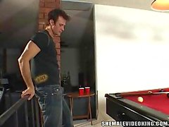 Pool table for tgirl fantasies