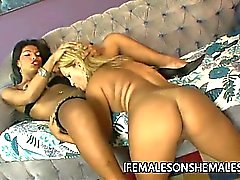 Shemale babe Taina leans back as her cock is sucked by her